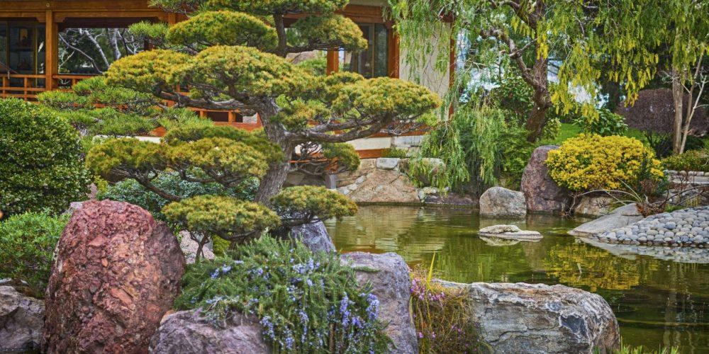 More Voda Záhrada